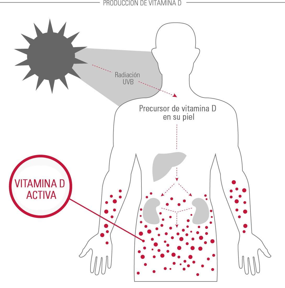 Eucerin: Acerca de la piel | La piel en diferentes partes del cuerpo